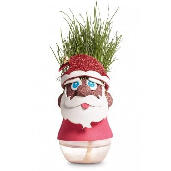 Tobar Santa Grasshead