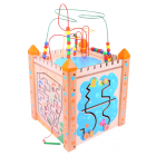 Large Activity Cube