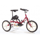 Theraplay Foldable Terrier Tricycle Basic*