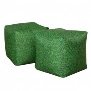 Learn About Nature Grass Bean Bag Cubes*