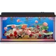 Large Lightup LED Jelly Fish Tank