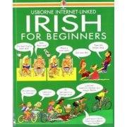 Languages Irish for Beginners book