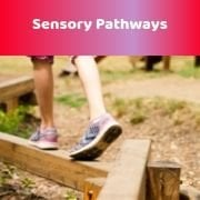 Sensory Pathways