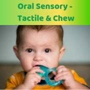 Oral Sensory - Tactile & Chew