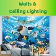 Wall & Ceiling Lighting