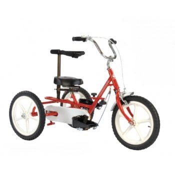 Theraplay Foldable Terrier Tricycle with Accessories*