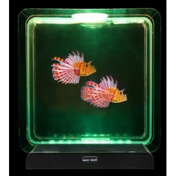 Tropical Fish Tank - Lightup
