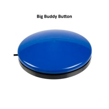 Big Buddy Button Switch*