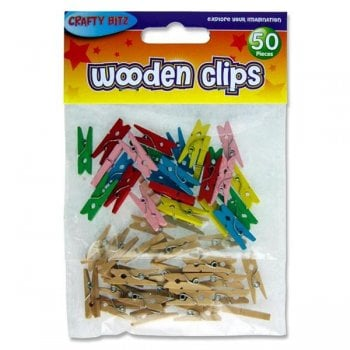 Assorted Mini Wooden Pegs - 50 Pieces