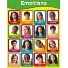 Emotions Poster*