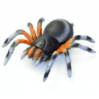 Wall-Walking Spider