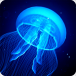 Large Lightup LED Jelly Fish Tank