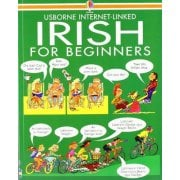 Languages Irish for Beginners book